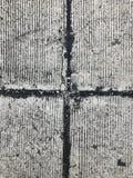 Piso del cemento Imagen de archivo