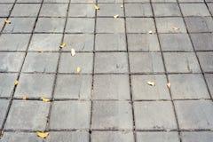 Piso del cemento Fotos de archivo libres de regalías