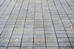 Piso del cemento Foto de archivo
