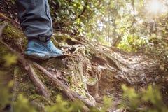 Piso soleado del bosque con caminar el zapato Fotos de archivo