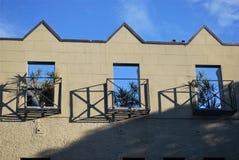 Piso superior del tejado de un edificio con las plantas en tres ventanas del balcón Imagen de archivo