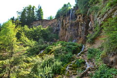Pisoaia waterfall and wild vegetation. Stock Images