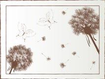 Pissenlit et guindineau illustration stock