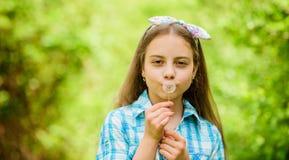 Pissenlit Vacances de ressort le jour des femmes peu de fille et avec la fleur de taraxacum Vacances d'?t? Rancho et pays photo stock