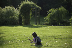 Pissenlits d'une cueillette de jeune fille dans un jardin ensoleillé Photographie stock libre de droits