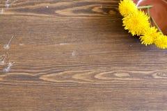 Pissenlits jaunes Photographie stock libre de droits
