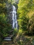 Pissevache-Wasserfall in der Schweiz Stockbilder