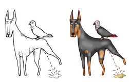 Pissing doberman and his parrot Stock Photo