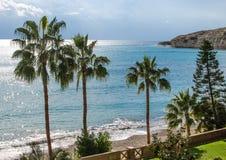 Pissouri zatoki plaży palma Zdjęcie Stock