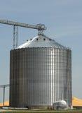 Pista 4 del grano Foto de archivo libre de regalías