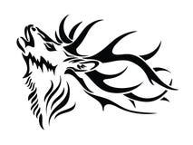 Pista aislada de los ciervos Foto de archivo libre de regalías
