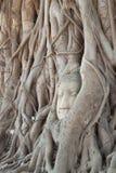 Pista antigua de buddha Foto de archivo libre de regalías