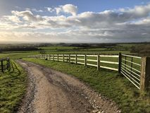 Pista attraverso i campi verde intenso in un paesaggio rurale, Inghilterra fotografie stock libere da diritti
