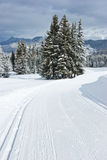 Pista a campo través del esquí Fotos de archivo