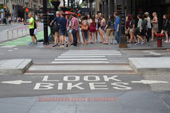 Pista Chicago do centro da bicicleta Imagens de Stock Royalty Free