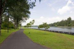 Pista ciclabile di camminata e dal fiume Fotografia Stock