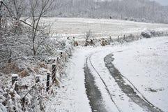 Pista coberto de neve Fotografia de Stock