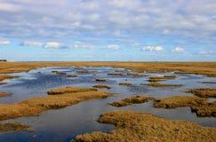 Pista danesa del pantano Foto de archivo libre de regalías