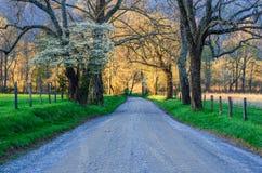 Pista das faíscas, angra de Cades, Great Smoky Mountains imagens de stock