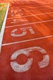 Pista de atletismo e esporte-campo no cerco natural verde Foto de Stock