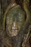 Pista de buddha en Ayutthaya, Tailandia imágenes de archivo libres de regalías