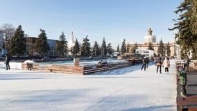 Pista de gelo bonita do Natal em Moscou, Rússia Fotos de Stock