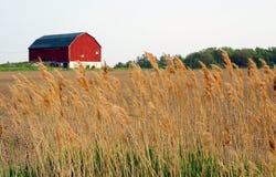 Pista de granja Fotografía de archivo