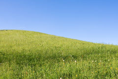 Pista de granja alpestre Imagenes de archivo