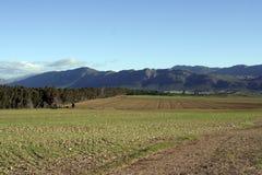Pista de granja arada Foto de archivo libre de regalías