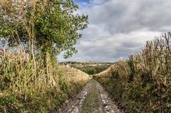 Pista de granja en Sussex del oeste, plumones del sur Fotografía de archivo