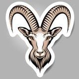 Cabeza de las cabras libre illustration
