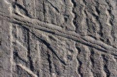 Pista de la rueda en la carretera nacional en el polvo Fotografía de archivo libre de regalías