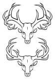 Pista de los ciervos ilustración del vector