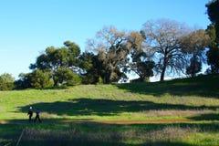 Pista de senderismo de California Imagenes de archivo