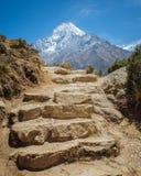 pista de senderismo de la montaña Fotografía de archivo libre de regalías