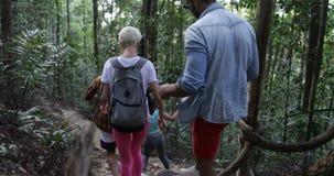 Pista de senderismo del grupo de personas Forest Path Helping Each Other, turistas de los amigos con las mochilas que emigran jun almacen de video