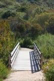 Pista de senderismo del yermo de la barranca del Laguna Beach Fotografía de archivo