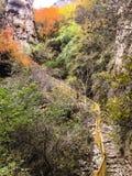 Pista de senderismo en caída Foto de archivo libre de regalías