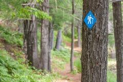 Pista de senderismo en el parque de Frontenac fotografía de archivo