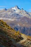 Pista de senderismo en el valle de Engadin sobre St Moritz, Suiza Foto de archivo