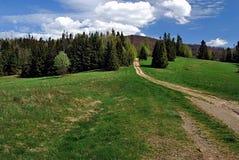 Pista de senderismo en Kysucke Beskydy con el prado y el árbol Imagen de archivo