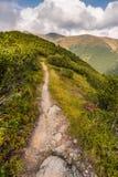 Pista de senderismo en las montañas Imágenes de archivo libres de regalías
