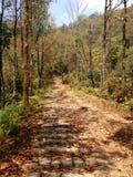 Pista de senderismo en Nepal Fotos de archivo