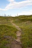 Pista de senderismo encima de una colina Fotos de archivo libres de regalías