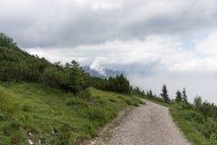 Pista de senderismo a través de las montañas de las montañas bávaras Foto de archivo libre de regalías
