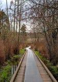 Pista de senderismo a través del bosque Fotografía de archivo
