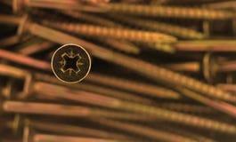 Pista de tornillo Imagen de archivo libre de regalías