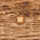 Pista de tornillo oxidada en la madera Imagen de archivo libre de regalías