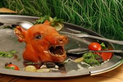 Pista de un cerdo Foto de archivo