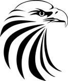 Pista del águila Fotos de archivo